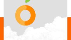 강남오피 오렌지