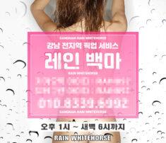 강남오피 레인백마